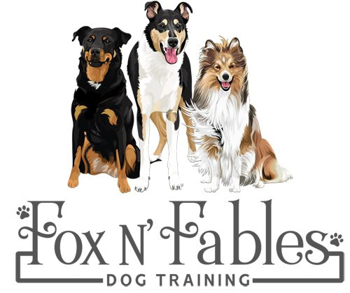 Fox N Fables Dog Training