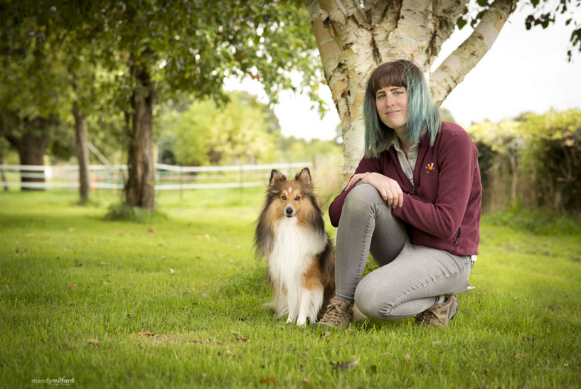 Dog Training Tidworth. Dog Trainer Salisbury. Dog Trainer Andover. Dog Training Tidworth